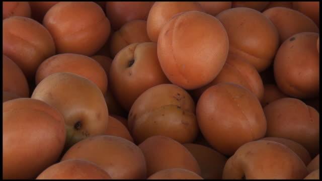 (HD1080i) Fresh Organic Aprium: Cross Hybrid of Apricot and Plum video
