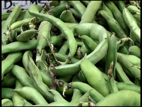 Fresh Organic Beans video