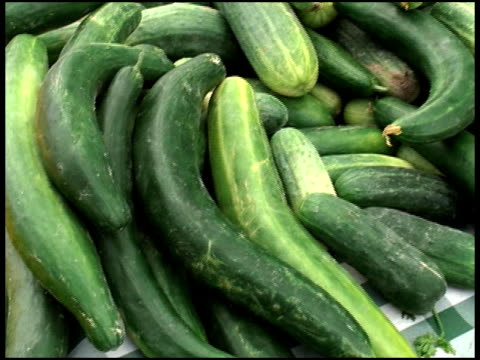 Fresh Organic Cucumbers video