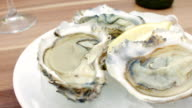 Fresh oysters with lemon on ice. video