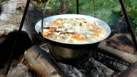 Fresh picked mushrooms cooking at open fire video