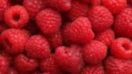 Fresh red raspberries, fruit background video