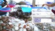 Fresh seafood at Market video