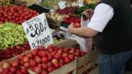 fresh tomatoes market video