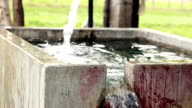 Fresh water falling in irrigation canal video