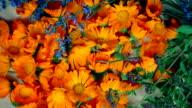 Freshly picked marigold lavender and oregano herbs. anticlockwise turntable video