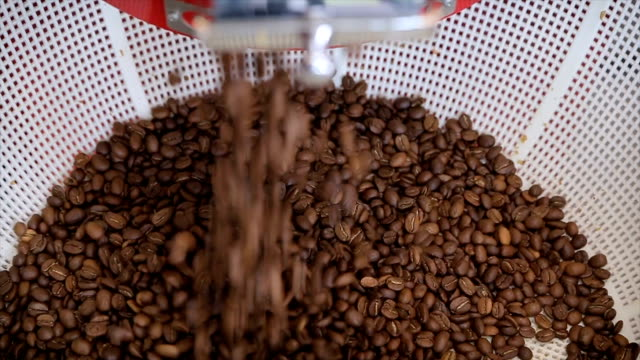 Freshly roasted coffee beans from coffee roaster. Coffee beans after roasting falling into basket video
