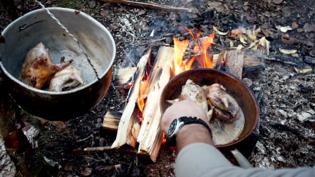 Fried chicken in hot oil and boiling in pan in outdoor. Wildfowl grouse video