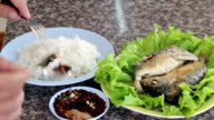 Fried mackerel and rice video