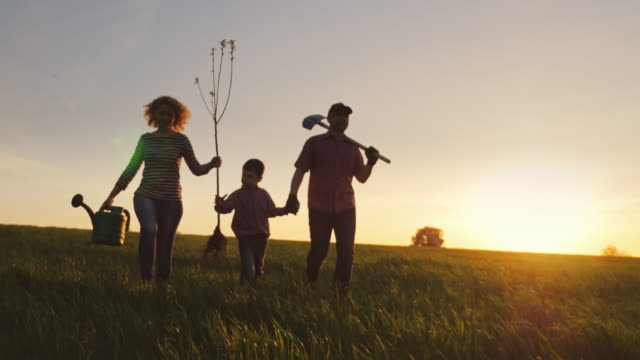 A friendly family with a young son is going to plant a tree. Carry a seedling, shovel and watering can. Silhouettes in a beautiful field on a sunset background video