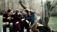 HD: Friends at Outdoors video