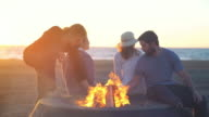 Friends building a campfire on the beach video