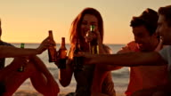 Friends drinking beer at the beach video