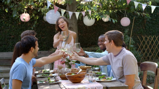 Friends Making A Toast At Outdoor Backyard Party video