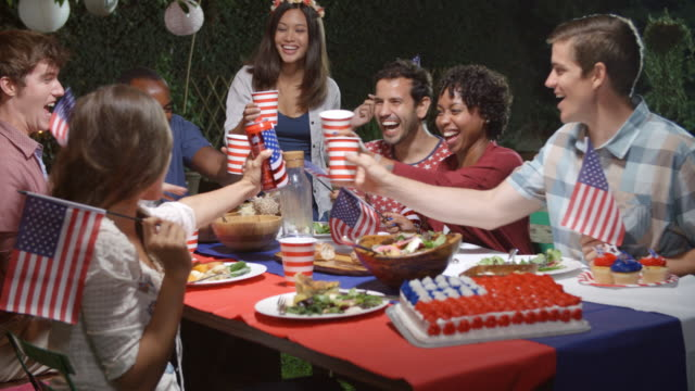 Friends Making A Toast To Celebrate 4th Of July At Party video