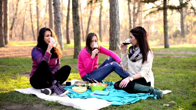 Friends on picnic. video
