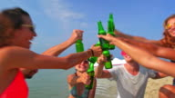 Friends party on the beach 4K video