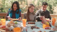 Friends passing food around the table at barbecue, handheld video