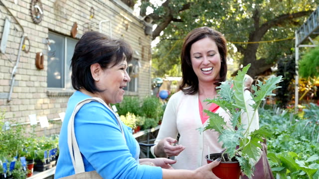 Friends shopping at local produce market or plant nursery video