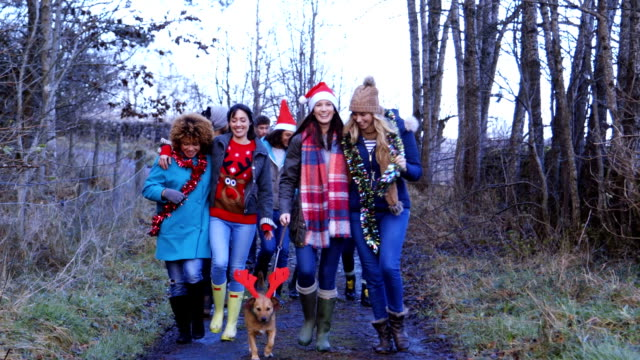 Friends taking the Dog for a walk on Christmas Day video