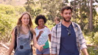 Friends talking as they walk through a forest, front view video