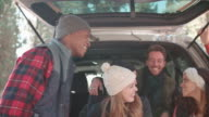 Friends talking at the open back of a car, close up video