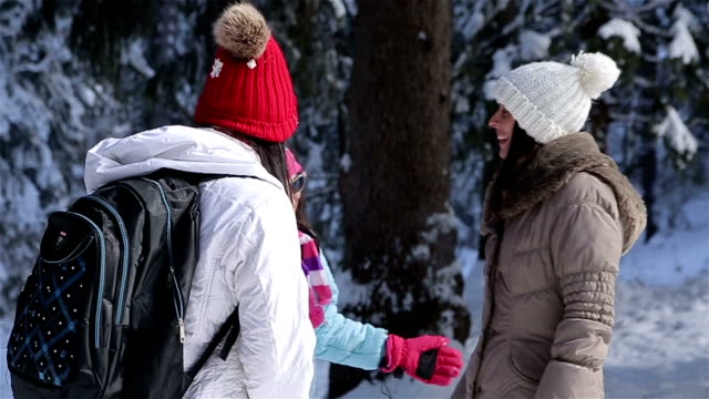 Friends talking in amazing winter forest ambient video