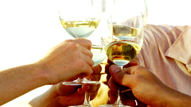 Friends toasting wine glasses on rooftop deck video