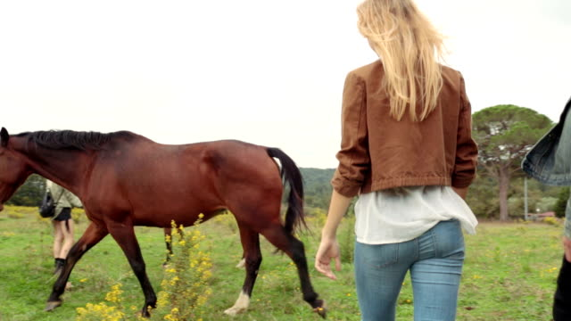 Friends walking in nature outdoor hug and have fun with horses - gimbal steadicam HD video footage video