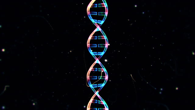 DNA from a Particle Vortex video