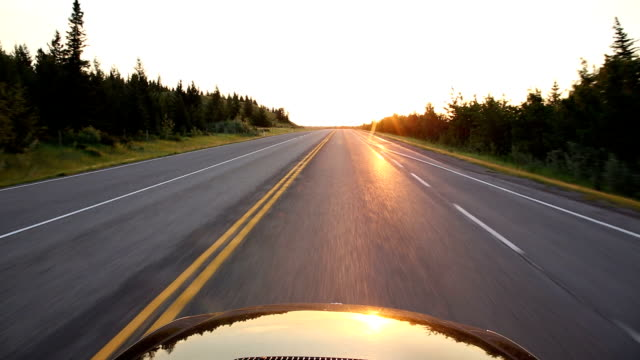POV from car as it drives along rural road, in forest video