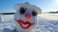 Front view of the pretty snowman video