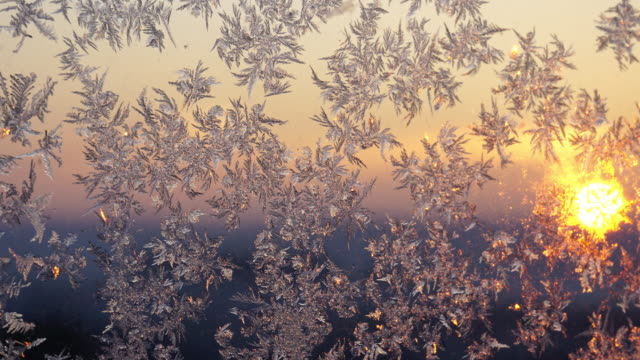 frost, frost on the glass, sunrise, video