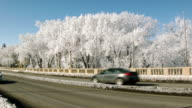 Frost-covered trees along a bridge video