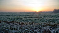 HD TIME-LAPSE: Frosted Meadow At Dawn video