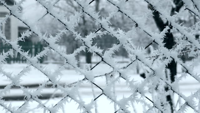 Frosted Mesh Fence in Winter video