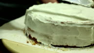 Frosting video