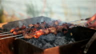fry the meat on the skewers. Picnic. video