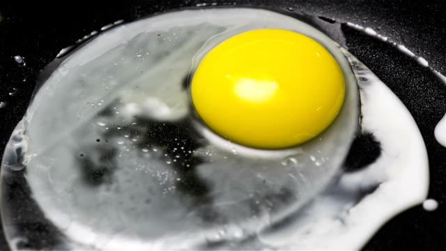Frying Egg video