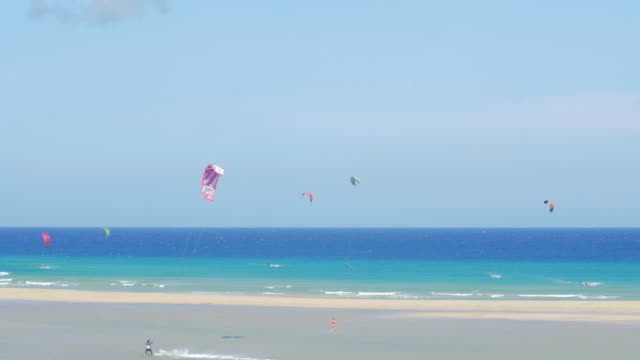 Fuerteventura- Panoramic of people do kitesurfing in a crystal-clear sea on a sunny day video