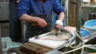 fugu, pufferfish, porcupine fish sashimi chef preparation alive video