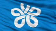 Fukuoka Prefecture Isolated Waving Flag video