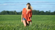 Full lenght portrait of a beautiful blonde young romantic woman in a red shirt walking slowly with a sexy look at the green field video