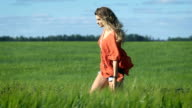 Full length portrait of a beautiful blonde young happy woman in a red shirt walking slowly at the green field video