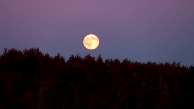full moon rise in night glowing video