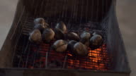 FullHD Snail Barbecue Grill cooking seafood. background eat Restaurant video