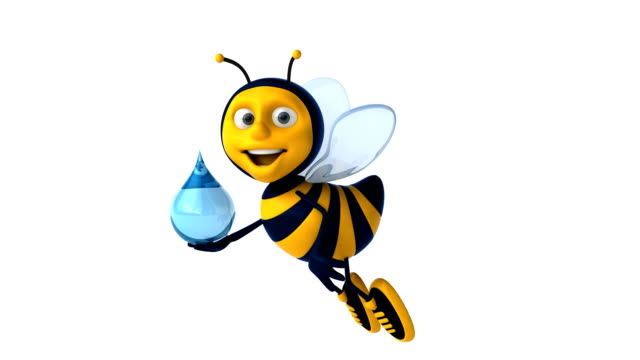Fun bee video