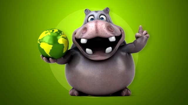 Fun hippo video