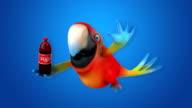 Fun parrot video