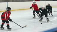 Future Hockey Stars video